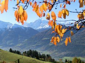 Herbstlicher Blick auf den Ortler vom Lechtlhof aus